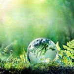 किसी दल को नहीं है पर्यावरण की चिंता