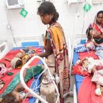 चमकी बुखार के खिलाफ प्रदर्शन, पुलिस ने 39 लोगों पर दर्ज की FIR