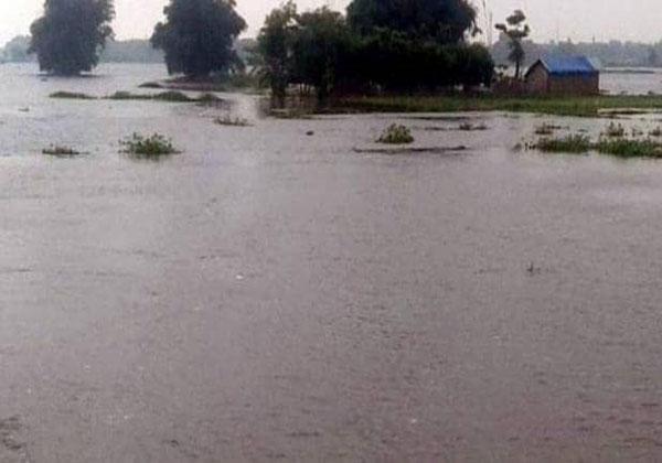बाढ़ में फंसे 183 छात्रों का हुआ रेस्क्यू, हॉस्टल अधीक्षक पर होगी कार्रवाई