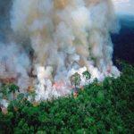 अमेजन के जंगलों में आग से दक्षिणी अमेरिका के 9 देशों के आसमान पर जहरीला धुआं