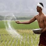 सबसे कम है बिहार-बंगाल के किसानों की कमाई, पंजाब-हरियाणा टॉप पर