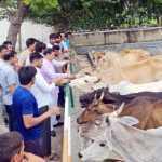 विधायक राजेश नागर ने गौशाला का दौरा कर अधिकारियों को दिए निर्देश